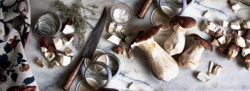 Funghi porcini: come pulirli e tagliarli