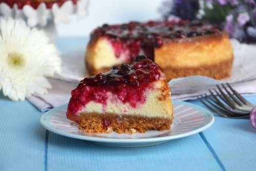 Cheesecake: le 10 migliori  ricette