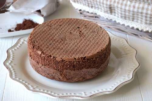 Ricette  Pan di Spagna al cacao