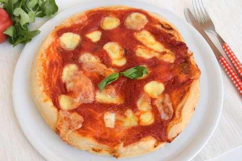 Ricette Pizze e Focacce Pizza senza glutine