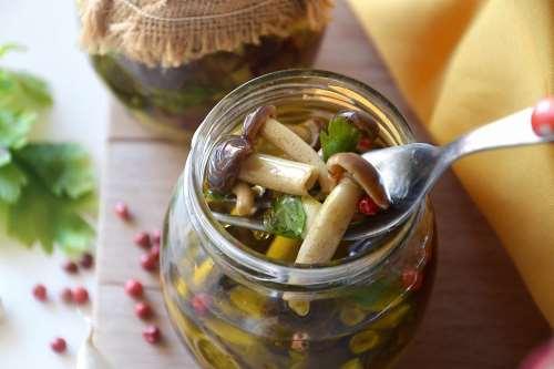 Conserve ricette Funghi sott'olio