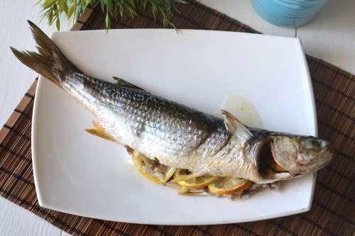 Ricette Secondi piatti Cefalo al forno